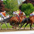 Race horses head for the first turn — Stock Photo #58401973