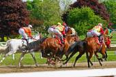 Race horses head for the first turn — Stock Photo