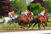 Race horses head for the first turn — Foto de Stock