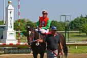 Jockey and horse win race — Stock Photo