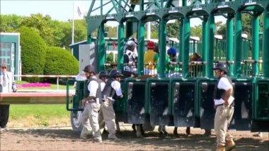 Race horses and jockeys enter starting gate — Stock Video