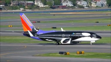 Southwest Airlines Seaworld jet plane — Stock Video