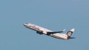 Boeing 737 taking off — Stock Video