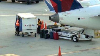 Delta Baggage Handlers — Stock Video