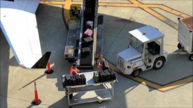 Airline Baggage Handlers — Stock Video