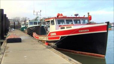 Fishing Boats At Dock — Stock Video