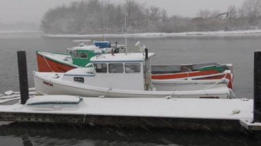 Moored boats in winter — Stock Video
