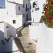 The narrow streets of the old town in Frigiliana a mountain village on the Costa del Sol in Spain — Stock Photo #64096507