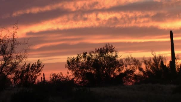 Sunset in the Superstition Mountains, Arizona — Vidéo