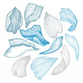 Hand drawn vector illustration - Collection of rose petals.  — Stock Vector