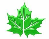 Green maple leaf icon — Stock Photo