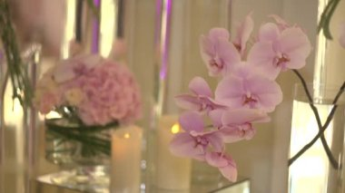 Orchid and candle — Stock Video