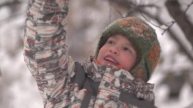 Snow pours from branch to child winter day — Stock Video