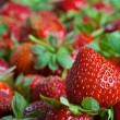 Red ripe fresh strawberries — Stock Photo #58748249