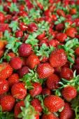 Seamless texture di fragole succose — Foto Stock