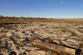 Pejzaż australijski w słoneczny dzień — Zdjęcie stockowe