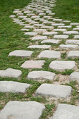 Pavement in cobbles in garden — Stock Photo