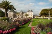 Luxembourg Gardens in Paris, France — Stock Photo