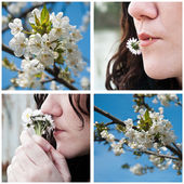 Spring with woman 's daisies and Cherry blossoms collage — Stockfoto