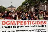 STRASBOURG - France - 23 May 2015 - people with banner during the demonstration against Monsanto and the transatlantique treated for the production of GMO in Europe - — Stock Photo