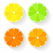 Collection of four citrus fruits icons in flat style — Stock Vector