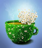 Herb tea cup from grass and flowers — Stock Photo