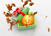 Halloween pumpkin in present box — Stock Photo