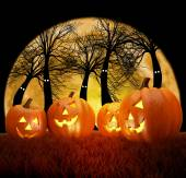 Halloween background scene with full moon, pumpkins and dark forest — Stock Photo