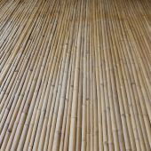 Bamboo wall texture background — Stock Photo