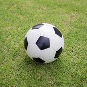 Piłka na zielonej trawie — Zdjęcie stockowe