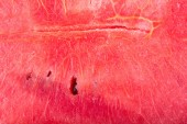 Close up image of red watermelon freshness — Photo