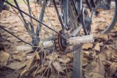 Bicycle and autumn dry leaves fall on the ground — Stock Photo