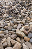 Pebble stone texture background — Stockfoto