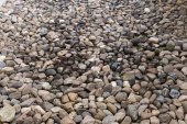 Pebble stone texture background — Stockfoto