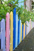 Colourful wood fence in small garden — Stock Photo