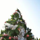 Wielki boże narodzenie drzewo — Zdjęcie stockowe