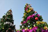 Big christmas tree — Stock Photo