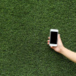 Hand holding mobile phone with green grass background — Stock Photo #63182235