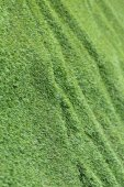 Abstract grass texture background, artificial green grass — Foto Stock
