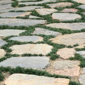 Design floor of pavement with stone and grass — Stock Photo