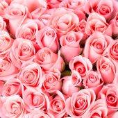 Rosa rosa Blume Blumenstrauß Hintergrund — Stockfoto