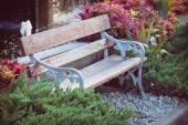 Old vintage bench in flowers garden — Stock Photo