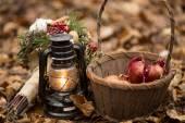 Podzimní Zátiší s granát do koše a olejové lampy — Stock fotografie