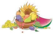 Fruit and sunflower. Harvest of apple pear peach grapes watermelon and plum. Autumn still life — Stock Vector