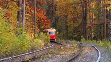 Tram in the autumn forest — Stockvideo