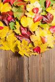Autumn leaves on table — Stock Photo