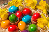 Easter nest with eggs and flowers — Stock Photo