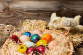 Chicks with easter eggs in a easter nest. — Stock Photo