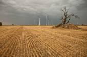 Farmy wiatrowej — Zdjęcie stockowe