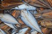 Dried fish in market  — Fotografia Stock